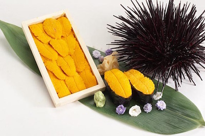 California Sea Urchin (Uni)
